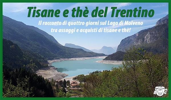 Tisane e thè del Trentino CognaTHE'